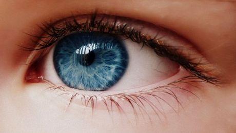 Les yeux bleus schizophr nie dans la peau - Yeux gris bleu ...